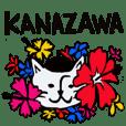 Beret cat in Kanazawa