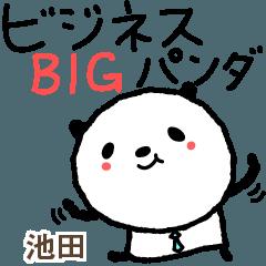 池田的可愛的熊貓業務大貼紙