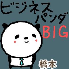 橋本的可愛的熊貓業務大貼紙