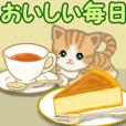 Orange tabby and white kitten 8