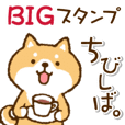 Cute Puppy 4 (Chibisiba)  Big stickers
