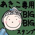 [あきこ]専用*大きいお名前BIGスタンプ