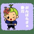『茶のみやきんじろう』掛川祭ver