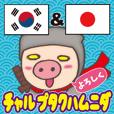 Korean pig Ninja