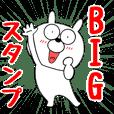 【BIG】毎日使える うさ美16