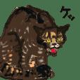 日刊猫自身