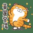 ランラン猫 6