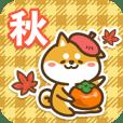 Petit Shiba in Autumn 2