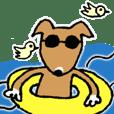 雑種の犬田太郎5
