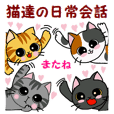 Stickers of cute cats daily conversation