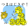 The day of the Boxfish