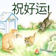 Love Cat House : Meow w Color pencil**