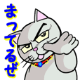 Cool cat 1