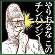 from ゴリラ Dear チンパンジー