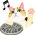 Cat Animated Stickers