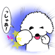 Bichon Frise Stickers Part3