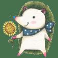 Meet adorable Porcupine Gosum!