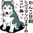 Wanko-Biyori Puppy of Siberian husky