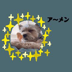 Minnie_20200916172427