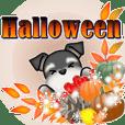 ミニチュアシュナウザーのHappy Halloween