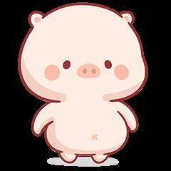 小豬萌萌8
