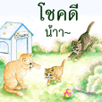 Love Cat House : Meow Color pencil 2020
