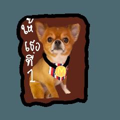 Ohkanna_20200920122202