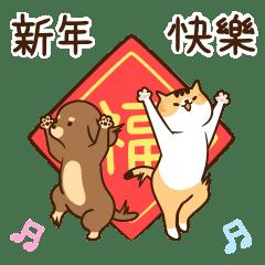 汪星人喵星人-聯手出擊迎冬日