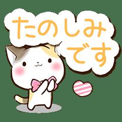 リボンと三毛猫【かわいい文字】