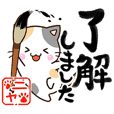 Cute Calico cat 3