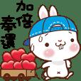 白兔小饅頭