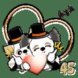 シーズー犬『秋』45