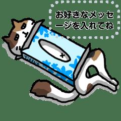 メッセージスタンプ(ネコ)