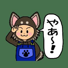 ★犬☆チワワちゃん★手話+あいさつ☆