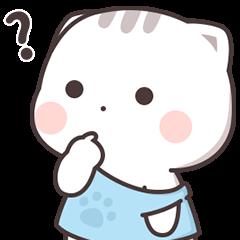 貓小醬 6
