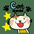 Cat special !