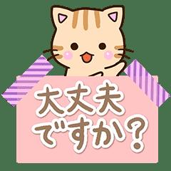 おちゃめなトラネコ【メモ帳】
