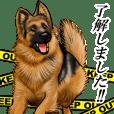 ジャーマンシェパード警察犬3~リアル編~