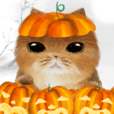 Cute Cat Big Stickers- Halloween