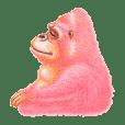 I LOVE Gorilla