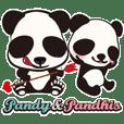 """""""pandy""""&""""pandhis""""of the panda"""