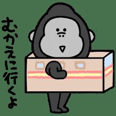【連絡】シュールなゴリラ