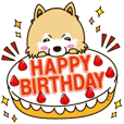 A sticker willingly.Pomeranian Birthday
