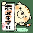 猫便り7 〜褒めます〜