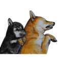 Shiba Inu Bersaudara dan kawan kawan - 3