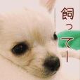 愛しのリッツ♡2
