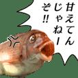 I fish!