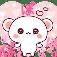 ❤️愛是超級快!蓬鬆小熊 PINK❤️3 24set