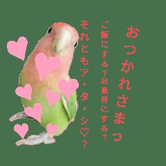 よもぎさんすたんぷ