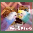 Fuu&Rin